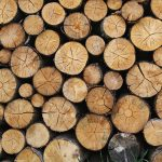 Cutting, Splitting and Stacking Wood
